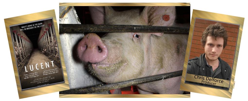 Animal Rights Humanitarian Award